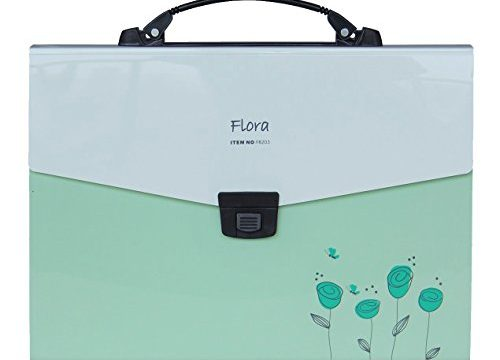 Snail&Hawk Poly Accordion-File-Folders with Handle and Tabs,13-Pockets,A4 Size Green
