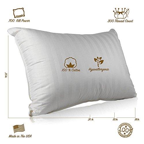 Continental Bedding 100 Premium White Goose Down Luxury