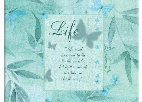 MBI 12×12 Inch Inspirations Post Bound Album, Life 866104