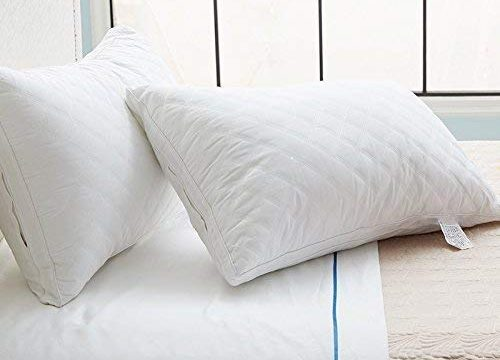Sable Pillows for Sleeping, 2 Pack FDA Registered Goose Down Alternative Adjustable Loft Quilted Bed Pillow, Super Soft Plush Fiber Fill, Relief for Neck Pain, Hypoallergenic, Queen Size