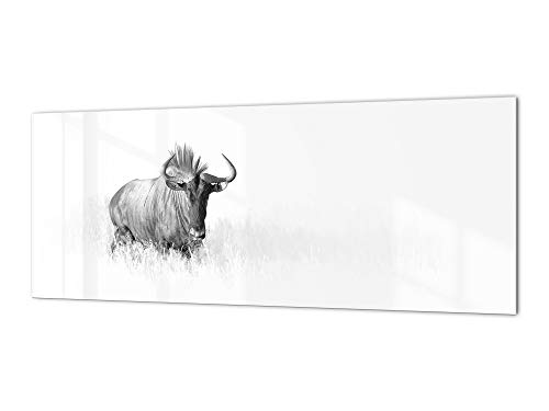 Top 10 Animals with Glasses Wall Art – Range Hood Parts & Accessories