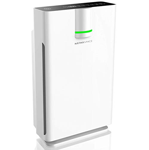 Top 10 Dehumidifier and Air Purifier Combo Large Room – HEPA Filter Air Purifiers
