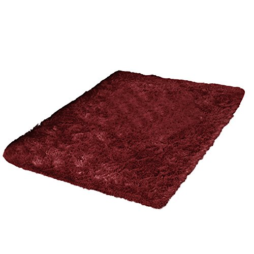 Top 10 Fluffy Rug for Bedroom Large – Carpet & Upholstery Cleaners & Accessories
