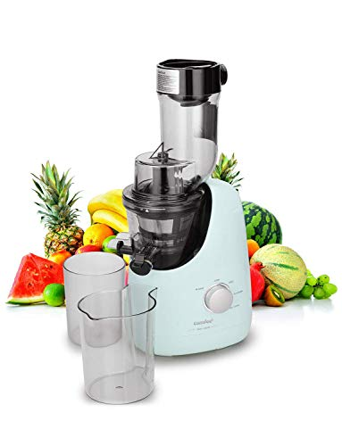 Top 10 Juicer Ice Cream Maker – Masticating Juicers