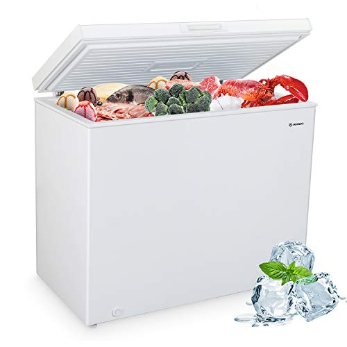 Top 7 Freezers Chest Clearance – Compact Refrigerators