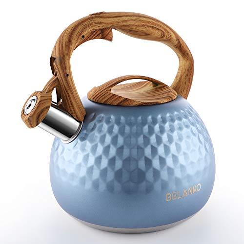 Top 10 Induction Kettle Stovetop – Tea Kettles